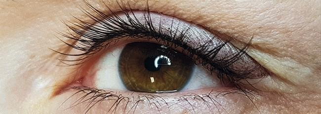 Augen Softliner